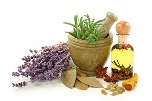 All Herbs and Plant Extracts of BioVitaWeb